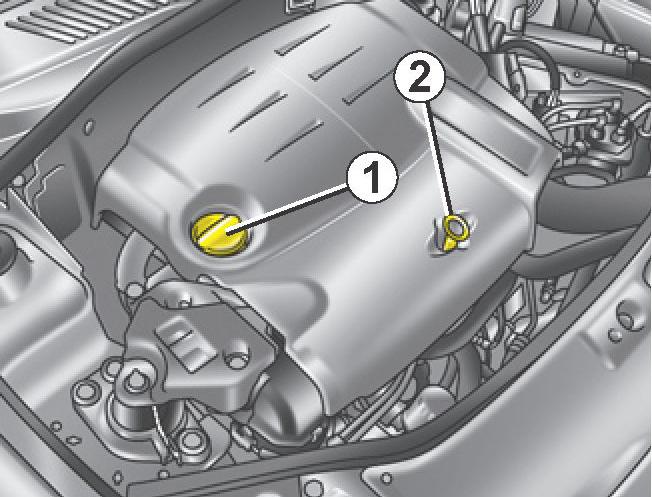 1 - Крышка двигателя для заливки масла. 2 - Ручка щупа.